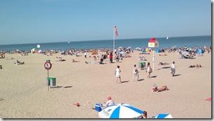 5. Ostende, playa con bicho