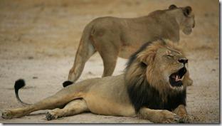 Malos tiempos para el León